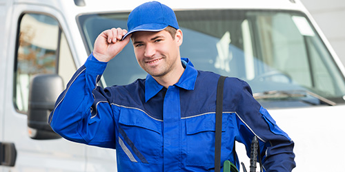 Pest Inspection Benefits